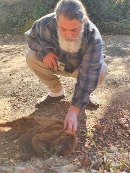Resgate Animal ganha destaque na mídia.