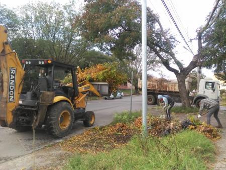 OBRAS em AÇÃO – Recolhimento de podas e restos de vegetação
